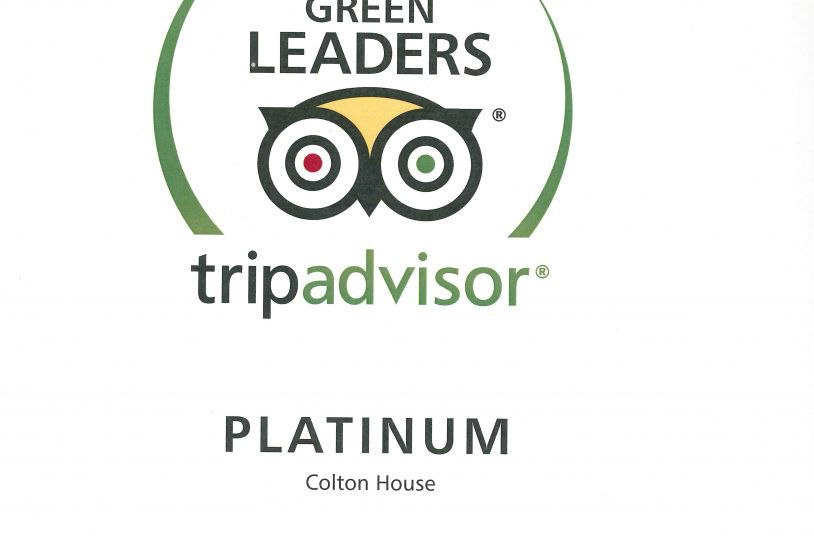 TA Green Leader 2016-3